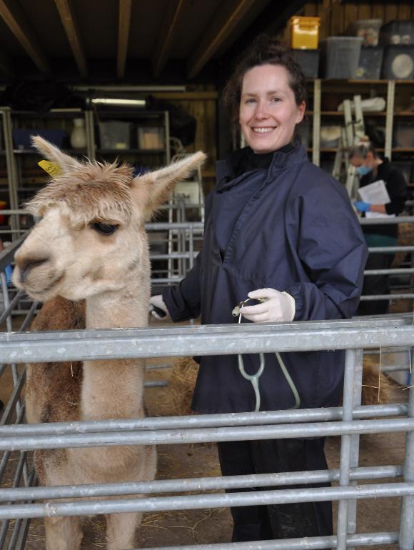 Rebecca Edwards BvetMed Bsc (Hons) CertAVP (Camelid Practice) MRCVS