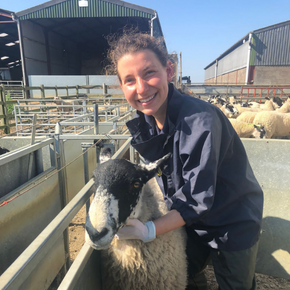 A warm welcome to Sarah Kinton, our new farm vet
